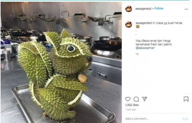 Ada Orang Sulap Kulit Durian Jadi Berbentuk Tupai. (Instagram/@awasgendut)