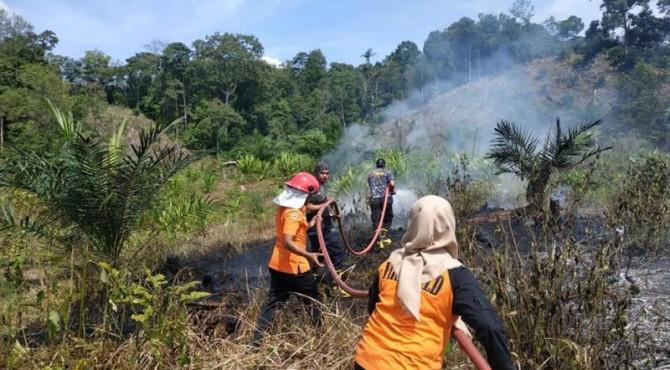 Kebakaran lahan di Kabupaten Sijunjung