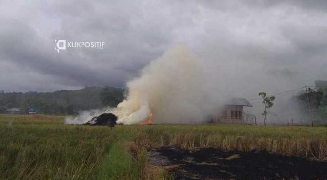 Ilustrasi/Petani membakar jerami di Pesisir Selatan