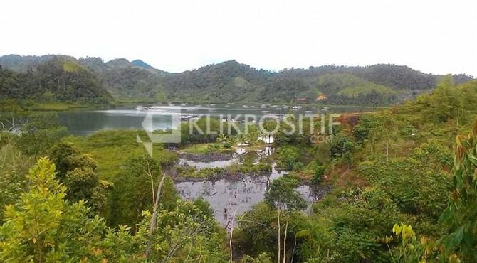 Hutan Bakau di Mandeh, Pesisir Selatan