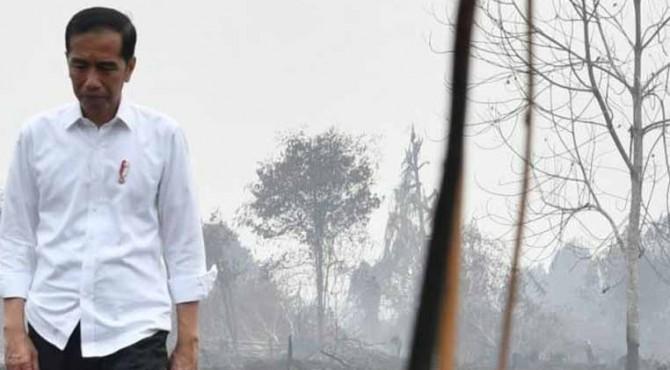 Presiden Jokowi pantau kebakaran hutan di Riau