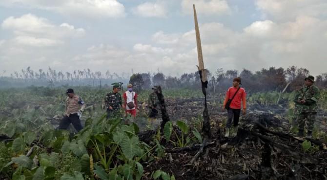 Tim gabungan saat memadamkan api di kawasan Pessel