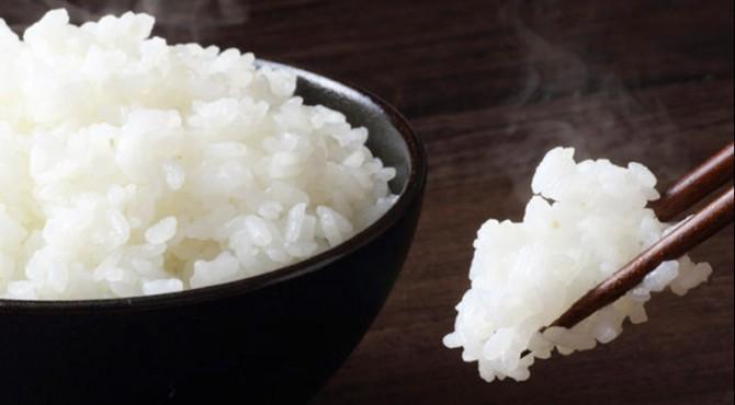 ilustrasi nasi