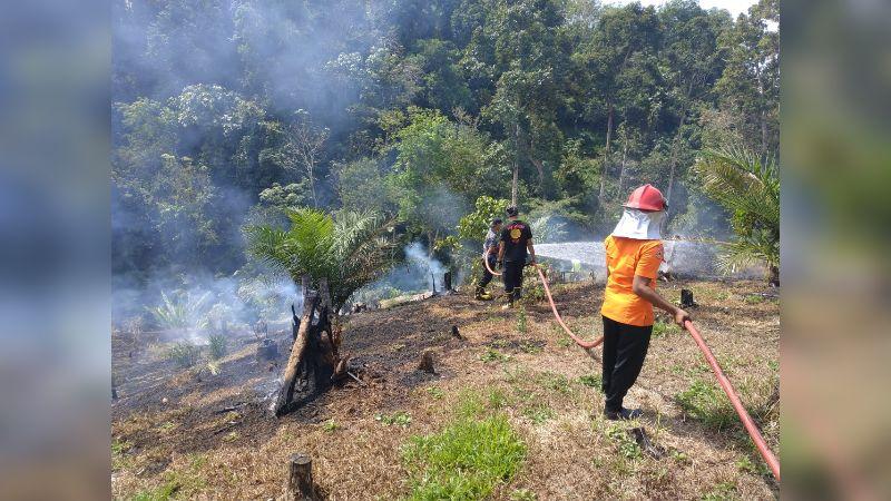 Petugas BPBD dan Damkar Saat Mematikan Api di Banda Dato, Jorong Koran, Nagari Pematang Panjang, Kecamatan Sijunjung, Kabupaten Sijunjung, Selasa 13 Agustus 2019