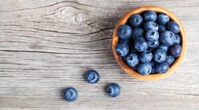 ilustrasi blueberry