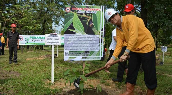 Dirut PT Semen Padang Benny Wendry (paling kanan) melakukan penanaman pohon di area konservasi Indarung, yang merupakan bekas tambang clay Semen Padang, belum lama ini. Pohon yang ditanam ada 6 jenis tanaman yang tergolong dilindungi oleh Undang-undang,