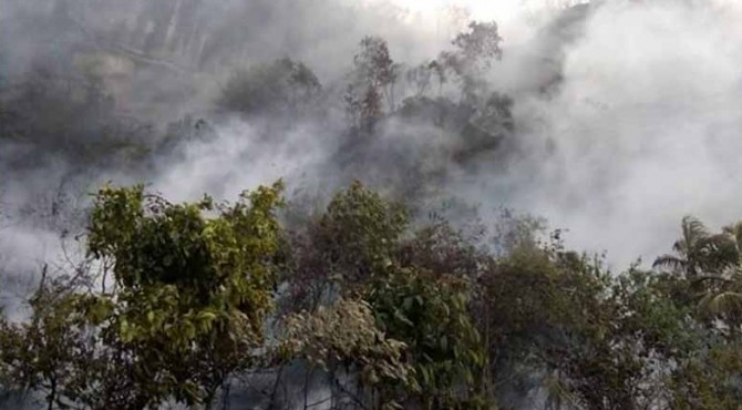 kebarakan hutan yangterjadi di dua titik di Payakumbuh