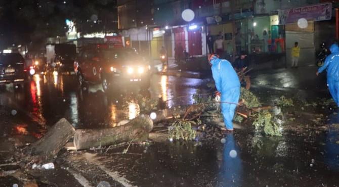 Tim Reaksi Cepat BPBD Payakumbuh bersama warga tengah membersihkan material pohon tumbang di Kawasan Jalan A. Yani, Katapiang, Labuah Basilang