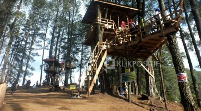 Rumah Pohon Keputusan Destinasi Baru Tanah Datar Klikpositif Com Media Generasi Positif