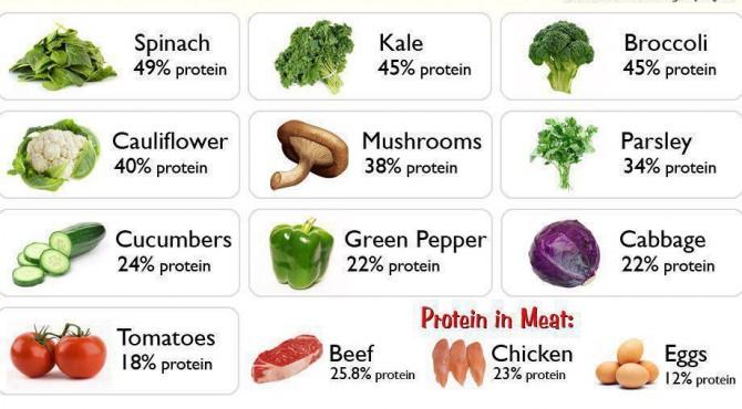 Ketimbang Protein Hewani Lebih Baik Perbanyak Asupan Protein