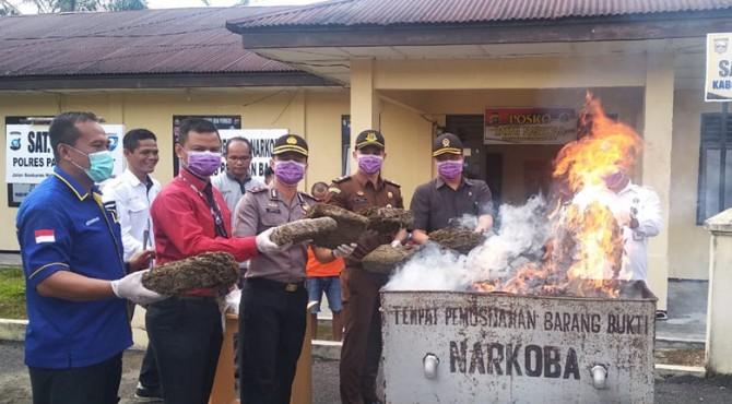 Pemusnahan barang bukti di halaman kantor Satresnarkoba Polres Pasbar