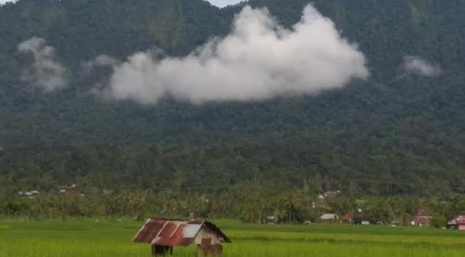 Kawasan Hutan di Kecamatan Tanjung Raya, Kabupaten Agam, Provinsi Sumatera Barat