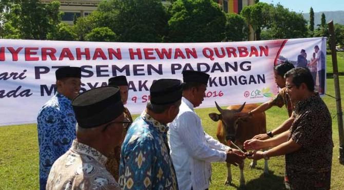 Dirut PT Semen Padang, Benny Wendry (kiri) menyerahkan hewan qurban secara simbolis kepada masyrakat yang diwakili Ketua KAN Lubuk Kilangan di Lapangan Cubadak Semen Padang, Jumat (9/9).
