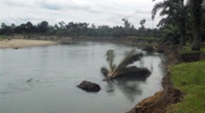 Kondisi tebing yang ambrol di sepanjang aliran sungai Batang Pasaman