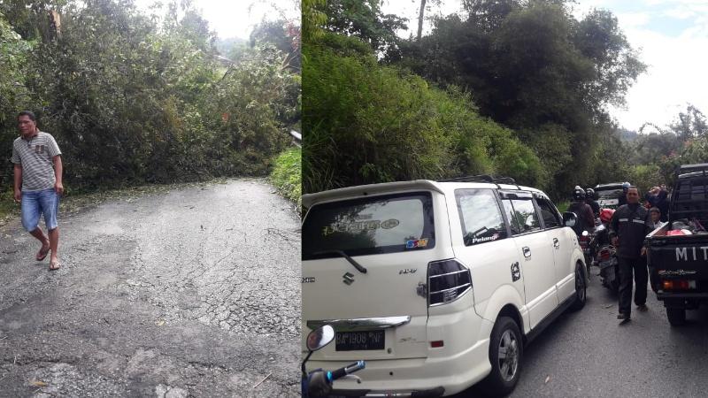 Pohon tumbang di Kelok 21
