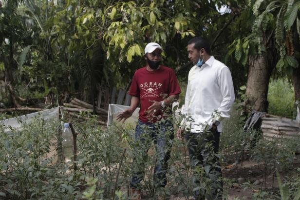Audy Joinaldy mengunjungi pertanian rumah tangga milik salah satu Anggota Komunitas Driver Online Kota Padang, Chandra ,di Kelurahan Koto Nan Baru XX, Kecamatan Lubuk  Begalung, Kota Padang, Selasa 20 Oktober 2020