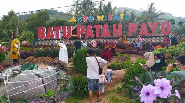 Kawasan Agrowisata Batu Patah Payo menjadi magnet baru pariwisata kota Solok