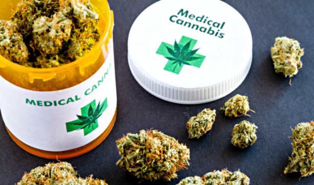 Medical Weed atau ganja untuk kebutuhan medis