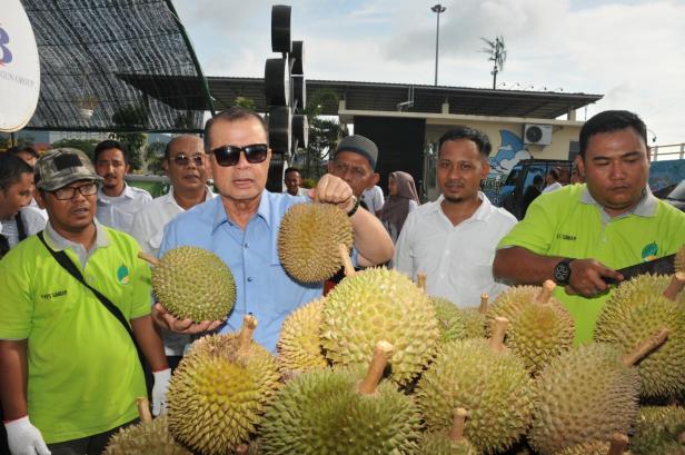 Durian di danau Cimpago, Kawasan Pantai Padang, Kota Padang