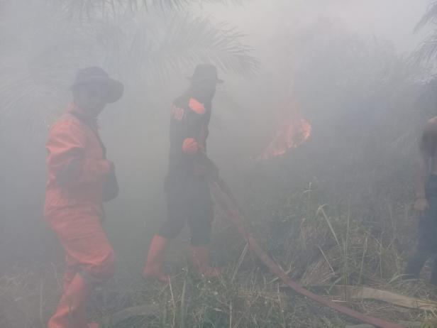 Petugas Berjibaku Memadamkan Api