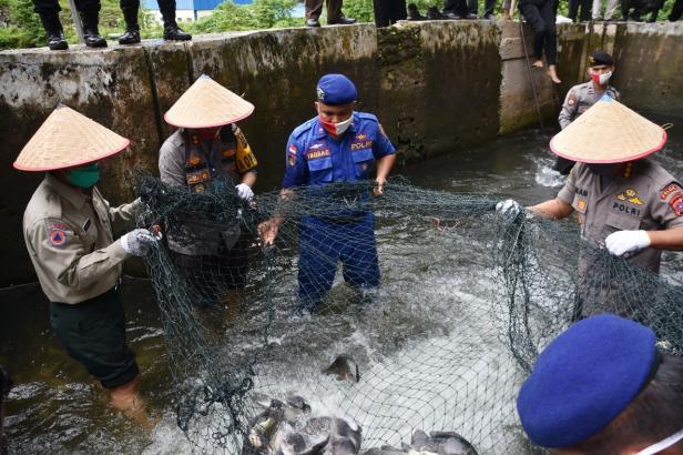 Indra Catri panen raya ikan kolam air deras bersama Polri