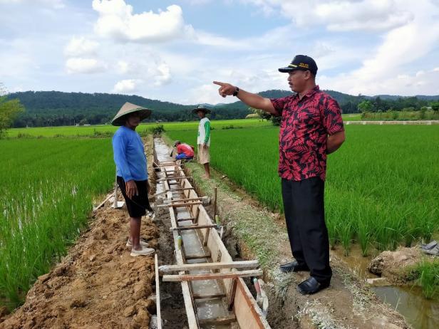 Ketua DPRD Kabupaten Dharmasraya Pariyanto meninjau pembangunan irigasi yang ada di Kelompok Tani Saiyo, Nagari Taratak Tinggi.