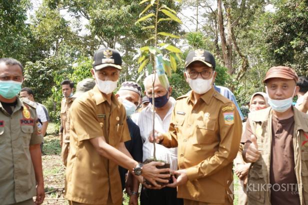 Kompak Bupati dan Wakil Bupati Solok Selatan Khairunas dan Yulian Efi Menanam Durian Pertama Untuk Masyarakat Solok Selatan setelah keduanya menjadi Kepala Daerah