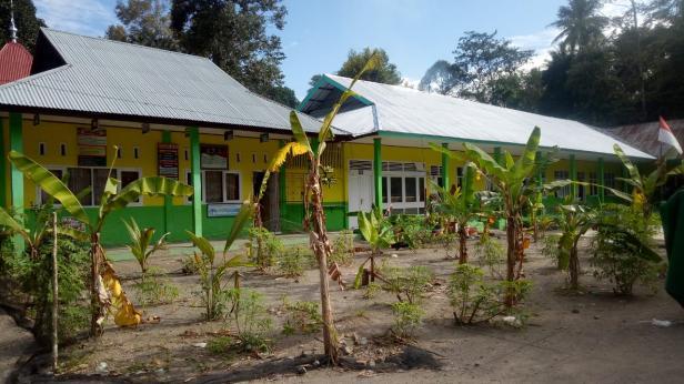 Lapangan sekolah SDN 10, Patamuan yang ditanami pisang, ubi dan kelapa