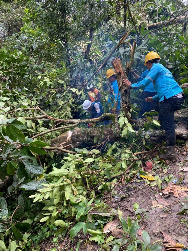 Proses penormalan pendistribusian listrik pasca bencana di Kabupaten Solok