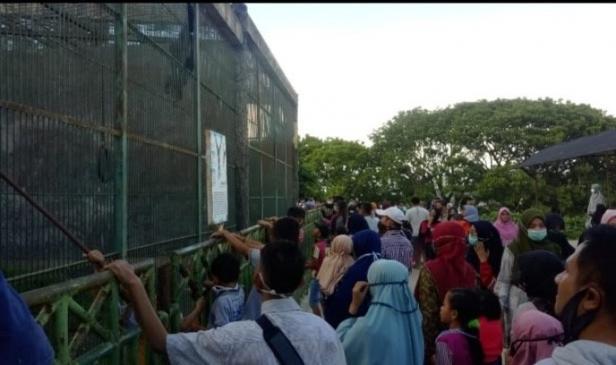 Kerumunan wisatawan saat wisata gratis