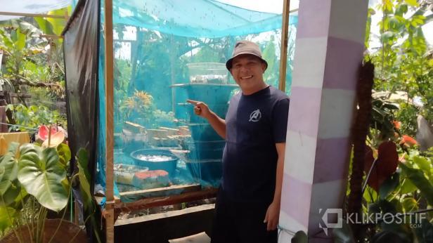 Anggota DPRD Solsel David Taster saat mengunjungi budidaya maggot di Padang Aro.