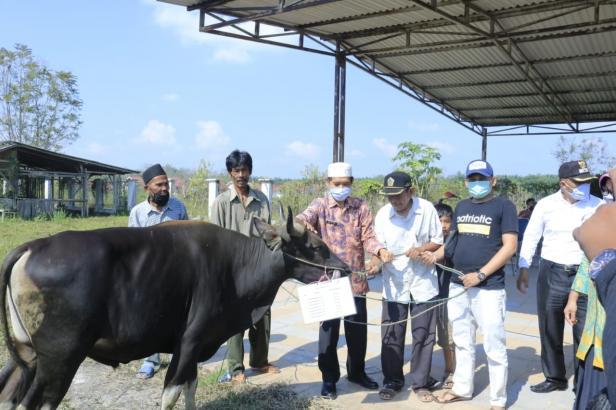 Asisten Administrasi Umum, Pemkab Dharmasraya Martoni menyerahkan secara simbolis puluhan ekor hewan Qurban ke sejumlah Masjid.