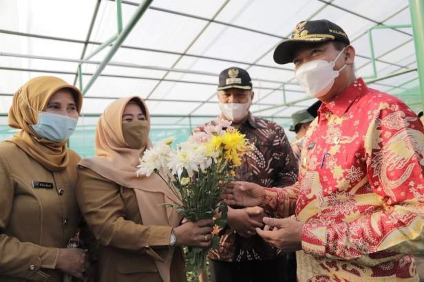Wako Pekanbaru, Dr. Firdaus dihadiahi bunga Krisan dalam kunjungan ke Agrowisata Batu Patah Payo