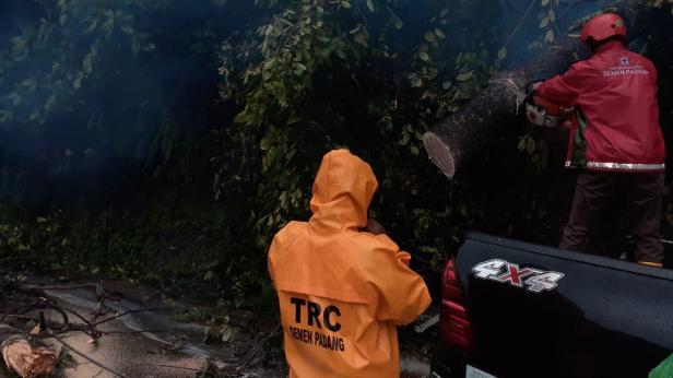 Relawan TRC Semen Padang evakuasi pohon tumbang di Jalan Padang-Solok