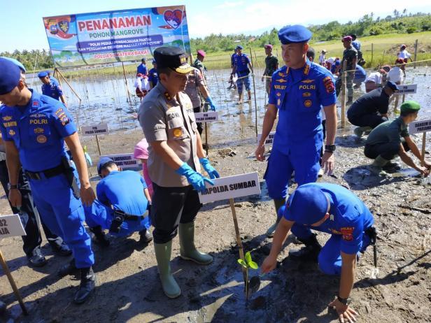 Kapolda Sumatera Barat tanam bakau di Tapakis