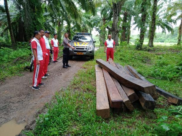 Sejumlah batang kayu berukuran balok ditemukan BAB Pessel
