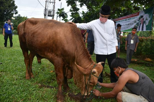 Bupati Agam saat melakukan penyembelihan hewan kurban di Masjid Agung Nurul Fallah Lubuk Basung