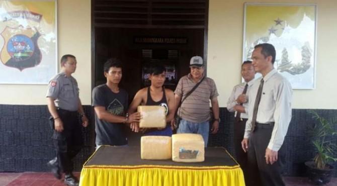 ilustrasi: Polisi Pasbar menangkap dua pengedar ganja, salah satunya merupakan pelajar SMA di Air Bangis