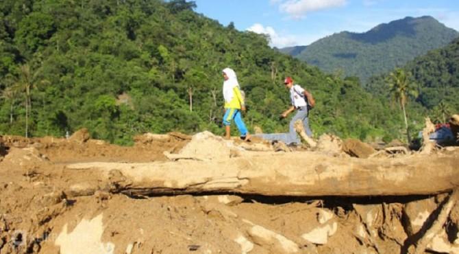 Selama dua tahun terakhir, Sumatera Barat mengalami penurunan tutupan hutan seluas 23.352 Ha