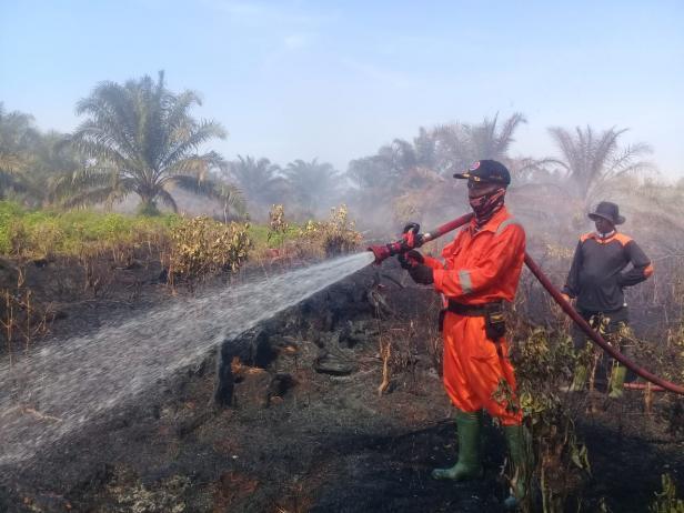 Kebakaran lahan di Agam