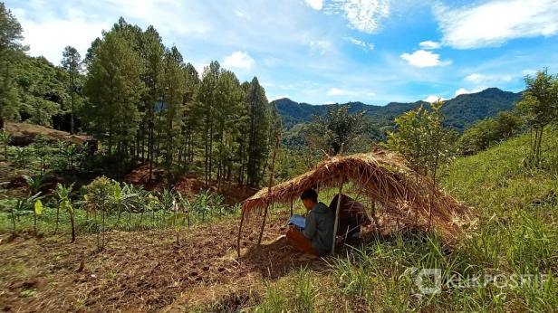 Untuk mendapatkan sinyal internet, siswa terpaksa belajar di sekitar perbukitan kawasan Palupuah Agam Sumbar