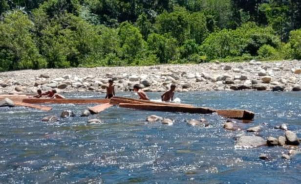 Proses melansir kayu ilegal di Sungai Batang Penadah Nagari Limau Purut Tapan