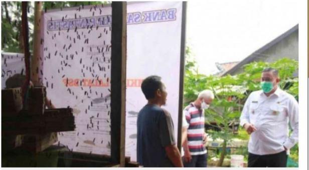 Petani Maggot Kota Bekasi, Rahmat berbincang dengan Wakil Wali Kota Bekasi Tri Adhianto. Dalam sebulan, Rahman mampu meraup omzet Rp 12 juta dari maggot.