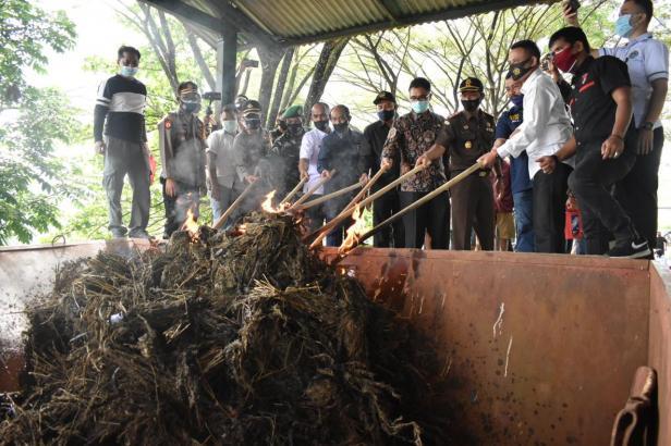 Pemusnahan barang bukti ganja seberat 98,3 kg di Polres Payakumbuh.