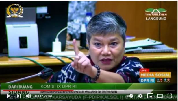 Anggota Komisi IX DPR RI dari Fraksi PDIP Ribka Tjiptaning
