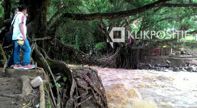 Jembatan Akar di Kenagarian Puluik-puluik, Bayang Pesisir Selatan