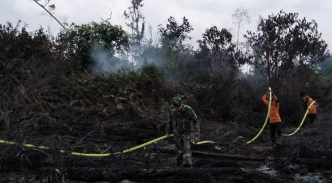 Petugas gabungan berupaya memadamkan titik api karhutla di Pessel