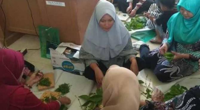 ibu-ibu di Pessel tengah mengolah daun gambir untuk dijadikan teh
