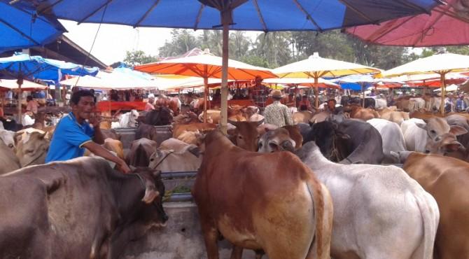 Pasar Muaro Paneh Solok