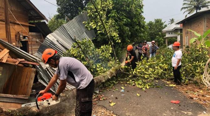 Pembersihan puing-puing pohon tumbang di salah satu rumah warga.